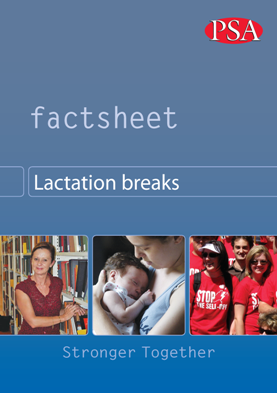 Pages from Lactation breaks updated Factsheet 2013 medium