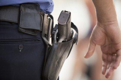 PSA raises Firearms Registry concerns