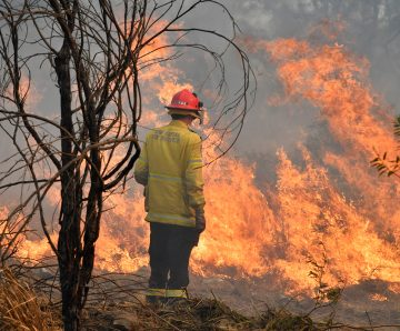 Rural Fire Service November update