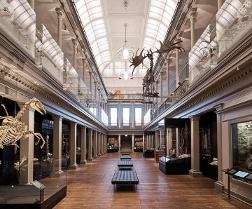"""Media Release: Govt cuts risk making Art Gallery of NSW, Australian Museum """"empty and expensive mausoleums"""